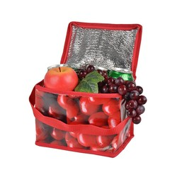 Bags raw material for non-woven cooler bag