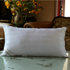 2015 New Fashion Products Natural Silk Pillow/Home International Pillow
