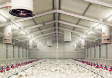 High quality prefabricated light steel structure broiler poultry farm house design