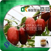 Good Quality 100% Natural Jujube Extract Powder