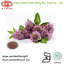 Red Clover Leaf Extract Powder / Red Clover Powder Extract / Red Clover Plant Extract / Red Clover Isoflavone Powder 8% 10% 20%