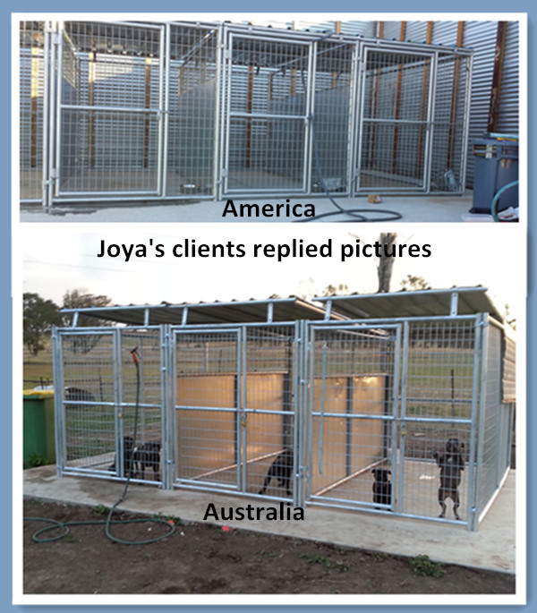 Dog kennels application.jpg