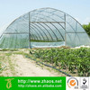 plastic film manufacturers | greenhouse plastic film 6 mil | plastic film greenhouse