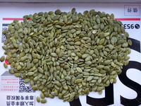 Chinese Grade AA Pumpkin kernels Without Shell
