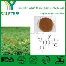 epimedium herb extract powder/epimedium extract manufacturers/epimedium extract icariin 10-40%