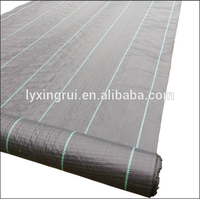 Factory supply woven black plastic ground cover