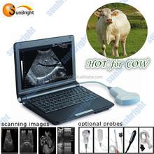 LCD Monitor Animal/Vet Laptop Ultrasound (SUNBRIGHT BRAND)