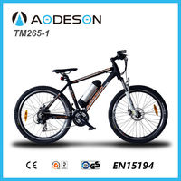 Electric bike hot sale motorized bicycle montain bike for outside sports
