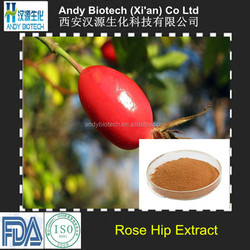 High Quality VC 5% Rose Hip Fruit Extract