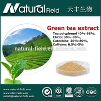 Advanced detecting instruments processing new arrival 98% green tea extract
