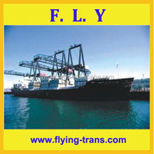 Dedicated trust worthy considerate service top quality top sell sea freight rates china to bandar abbas
