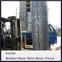 Welded Razor Wire Mesh /Fence