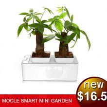 Hot selling cheap decorative garden pots