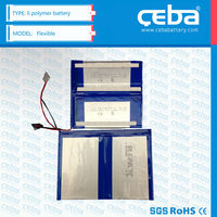 Ceba 5000mAh li polymer rechargeable battery 3.7V for power tools/ Electric vehicles