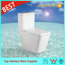 A2507 Chinese New Single Dual Flush Modern Toilet