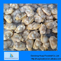 frozen clams fresh seafood
