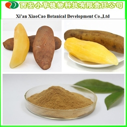 Supply High Quality Yacon Extract Yacon Fruit Extract