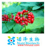 100% Natural Chinese Herb Extract/19% HPLC American Ginseng Extract/100% Pure Natural Plant Extract for Health Care