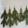 /product-gs/christmas-pe-artificial-pine-branches-60130430148.html