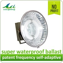 Energy saving electrodeless fluorescent induction lamp