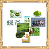 GMP factory supply Hot sale High quality Green Tea Extract