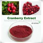 Apis medicina cranberry extrato de pó, natural extrato de cranberry