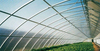 Cheap polycarbonate sheet cover grprefabricated dome greenhouse parts