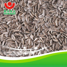 sale sunflower seeds from Inner mongolia