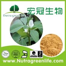 Fenugreek Seed extract /fenugreek powder