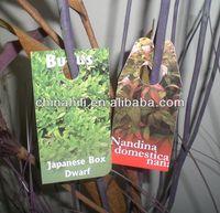 Best China plant label vendor/manufacture plastic garden plant label