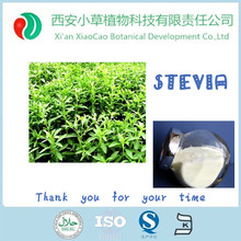 China stevia leaf price /organic stevia