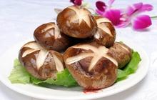 mushrooms truffles