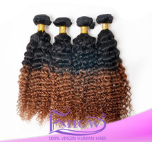 Stocks! Cheap Price Top Quality 20inch Fold Two Tone Color Synthetic Kinky Twist Marley Braiding Hairs