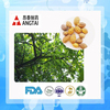 High purity Luteolin from terminalia chebula extract with factory price