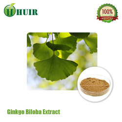good quality good price Natural Ginkgo Biloba Extract