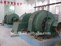 Hydro Power Design & Engineering Francis Turbine Kaplan Turbine Pelton Turbine Generator Manufacturer
