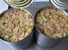 Canned mushroom pieces and stems(PNS) in tin, health canned food ,fruits and vegetables. market price hot sale products,
