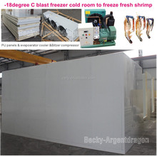 -18degree C blast freezer cold room to freeze fresh shrimp