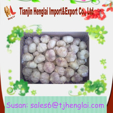 red garlic distributor wholesale 2015 fresh china garlic