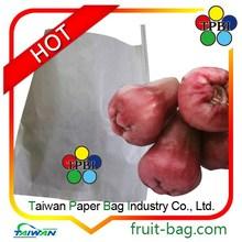 wax apple tree paper bag,wax apple paper bag,growing paper
