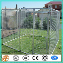 6' x 6' Professional metal Dog Kennels