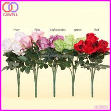 calla lily plum