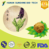 Medical product Caulis Cistanchis Extract powder 5% Glycosides