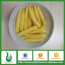 Wholesale canned baby corn with HACCP HALAL certificates M size 14-20 pcs