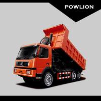 DY Mining Dump truck (DYX3253) 6x4 (336hp)