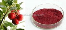 Cranberry Extract with Anthocyanidin
