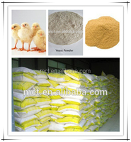 Ponltry & Aquaculture feed Yeast Powder 60% for animal growth