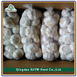 Pure White Garlic Producer/Farmer/Supplier