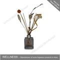 clássico de cana difusor do óleo com vara e flor