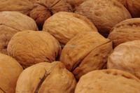 dry fruit walnut shell, sell walnuts unshelled